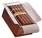 Montecristo Cabinet Selection No. 20 Medium Brown